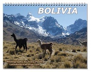 2015 Bolivia Snow Mountain Calendar