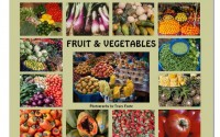 vegetable-calendar-south-america-663