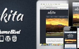 akita-theme-wordpress-review-example